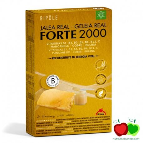 Jalea real forte 2000 Bipole Dietéticos Intersa