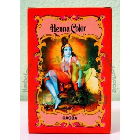 Henna Radhe Shyam